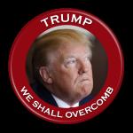 Anti Trump Button 300